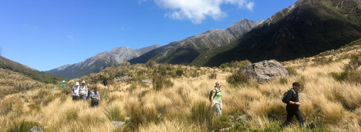 arthurs pass hiking