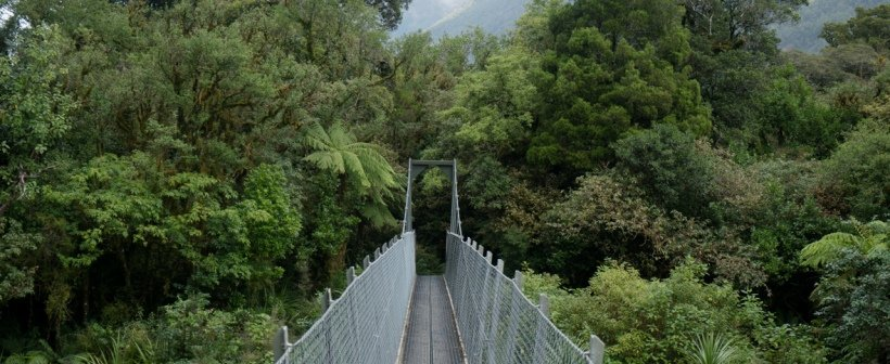 hollyford bridge crossing2