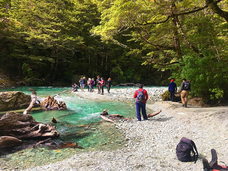 New Zealand solo travel tours, Routeburn Track River, Fiordland