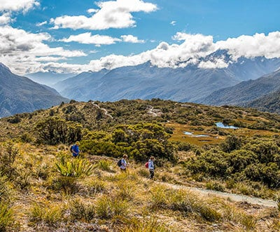 which new zealand hiking trip