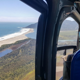 Helicopter tour at Martins Bay, Fiordland New Zealand