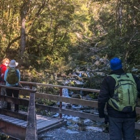 Group on Routeburn Track bridge, Otago New Zealand