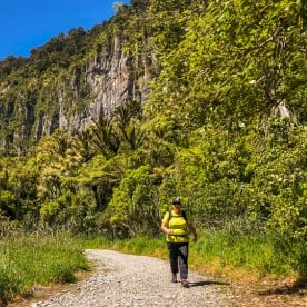 Pororari river track, Paparoa National Park West Coast New Zealand