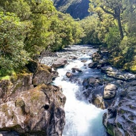 Guest at The Chasm Viewing Bridge, Cleddau river, Fiordland New Zealand