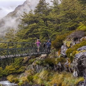 Passing bridge at Nelson Lakes National Park river, Tasman New Zealand