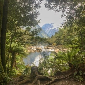 Arthur River, Milford Track Fiordland Southland New Zealand