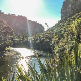 Porarari River at Paparoa National Park, West Coast New Zealand