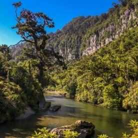 Pororari river, Paparoa National Park West Coast New Zealand