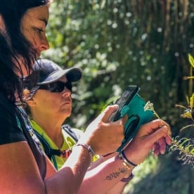 Taking picture of a flower at Pororari river, Paparoa National Park West Coast New Zealand