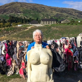 Cardrona Bra Fence, Otago New Zealand