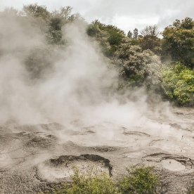 Mud pool in Rotorua, Bay of Plenty New Zealand