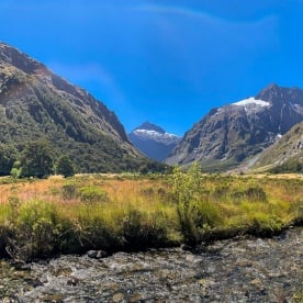 Monkey Creek, Fiordland New Zealand