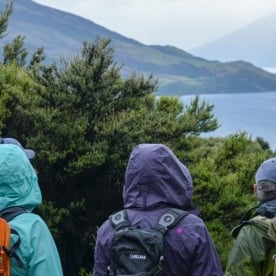 Mou Waho Island Walking Tour, Lake Wanaka New Zealand