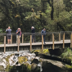Chasm at Cleddau River, Fiordland National Park Southland New Zealand