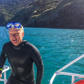 Guest swimming with Dolphins at Kaikoura, Canterbury New Zealand