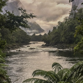 Arthur river, Fiordland New Zealand