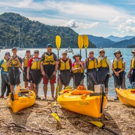 Group Kayaking at Marlborough Sounds, New Zealand