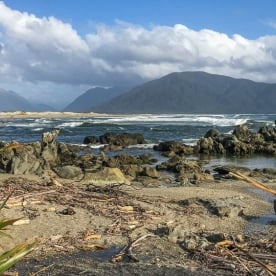 Martins Bay, Fiordland National Park Southland New Zealand