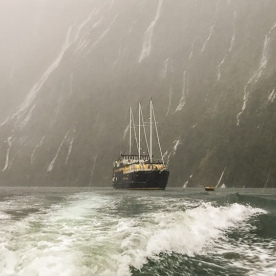 Milford Mariner at Fiordland, New Zealand