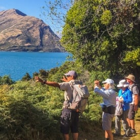 Walking tour at Mou Waho Island, Wanaka Otago New Zealand
