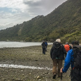 Walking at Martins Bay, Fiordland New Zealand