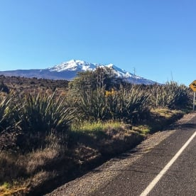 On the road to Tongariro National Park, Manawatu-Wanganui New Zealand