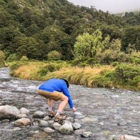 Drinking water at Monkey Creek, Fiordland National Park Southland New Zealand