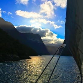 Coming into Milford Sound under sail. Beautiful.