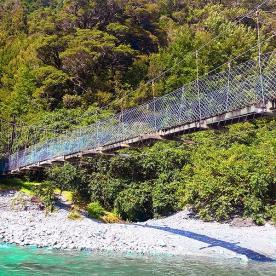 hollyford track swingbridge new zealand