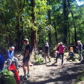 group of hikers at hollyford track