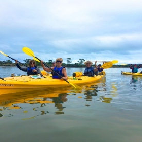 Back in the kayaks again. This time in New Zealands largest marine wetland