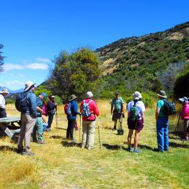 Our man from Eco Wanaka Tours talking to the group at Mou Waho Island Nature Reserve