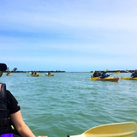 Guided Kayaking at Okarito Lagoon