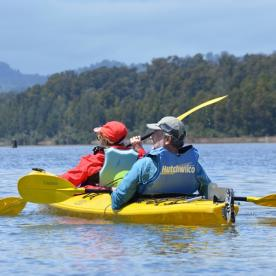 kayaking at okarito lagoon new zealand