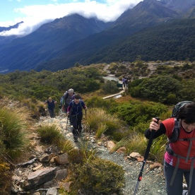 4 hiking hollyford track fiordland southland