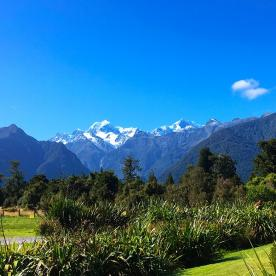 Maybe the best cafe view in the world? That's Aoraki/Mt Cook seen from Lake Matheson on the West Coast.