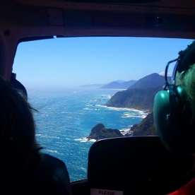 Helicopter Tour at Milford Sound
