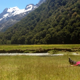 resting at routeburn flats