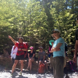 routeburn track hiking group