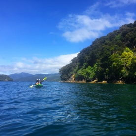 Kayaking out on the Queen Charlotte Sound