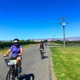 Cycling around the vines near Blenheim