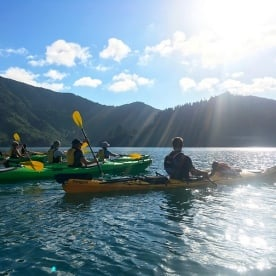 Back in the kayaks at the stunning Lochmara Bay