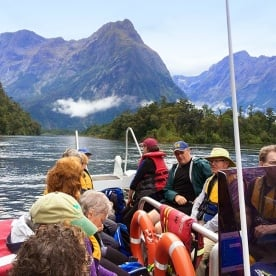 cruising across milford sound