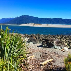 The sand dunes and seal colony where the Hollyford River meets the Tasman sea. Martin's Bay.