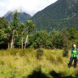 Walker on the Hollyford Track