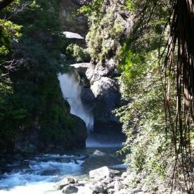 Hidden Falls on the Hollyford Track