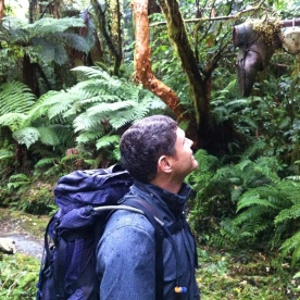 old relic of Milford Track