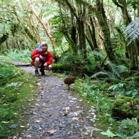 Weka on the Milford Track