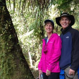 Paparoa Forest Hiking