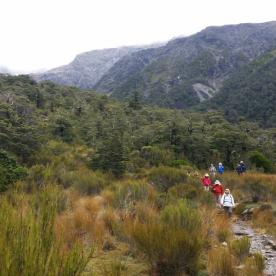 Walking in Arthurs Pass National Park